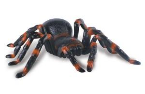 spider conrrol