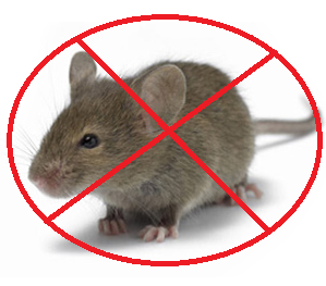 mice control services