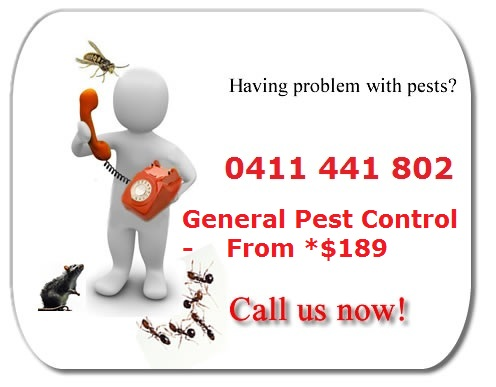 General Pest Control - From$189