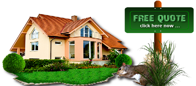 Building and pest inspection Perth